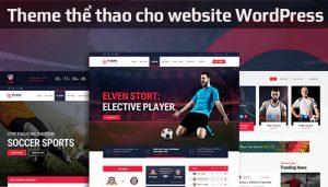 Top 10 theme thể thao cho website WordPress đẹp nhất
